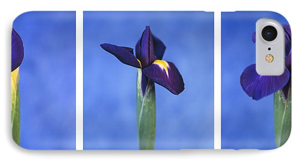 IPhone Case featuring the photograph Iris by Lana Enderle