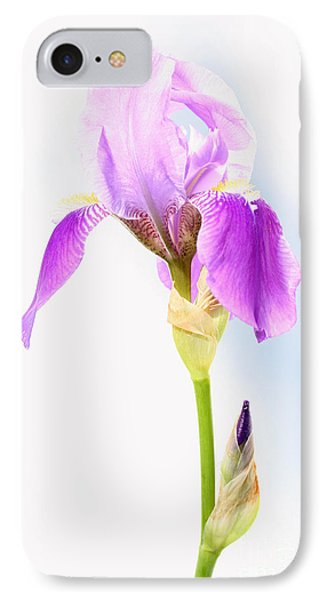 Iris On A Sunny Day IPhone Case by Steve Augustin