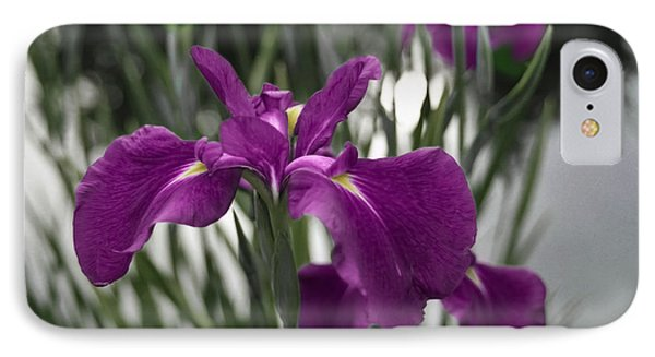Iris On Pond's Edge IPhone Case by Penny Lisowski