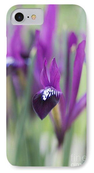 Iris Purple Gem IPhone Case by Tim Gainey