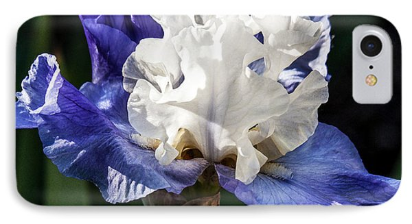 IPhone Case featuring the photograph Stairway To Heaven Iris by Roselynne Broussard