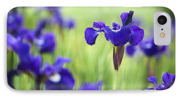 Iris Sibirica Shirley Pope IPhone Case