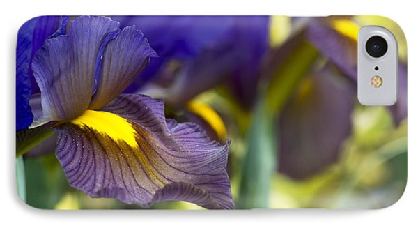 Iris Hollandica Eye Of The Tiger IPhone Case