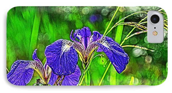 IPhone Case featuring the photograph Irises by Cathy Mahnke