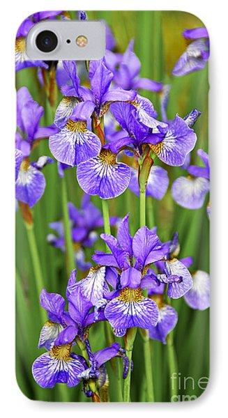Irises IPhone Case by Elena Elisseeva
