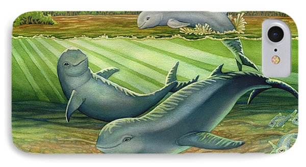 Irrawaddy Or Mekong River Dolphin Phone Case by Tammy Yee