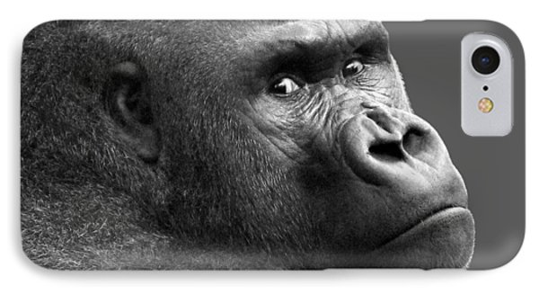 Is That A Chip On My Shoulder IPhone Case by Nikolyn McDonald