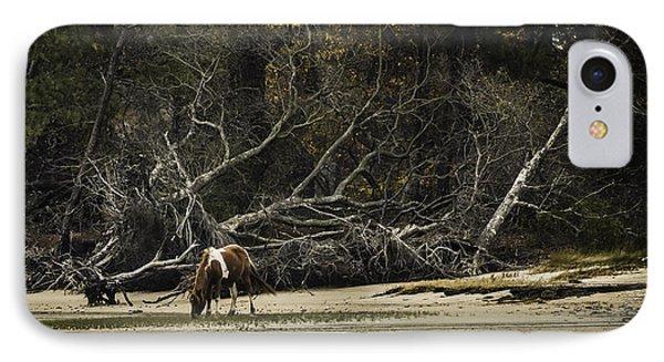 Island Pony IPhone Case