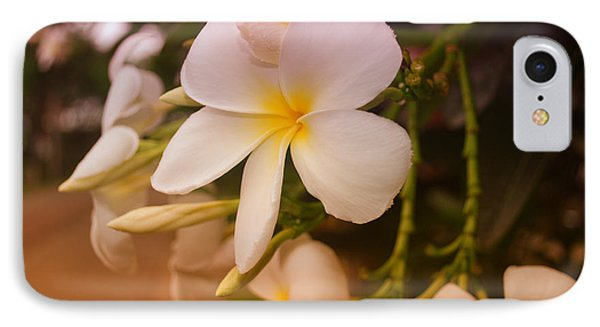 IPhone Case featuring the photograph Isle De Java by Miguel Winterpacht
