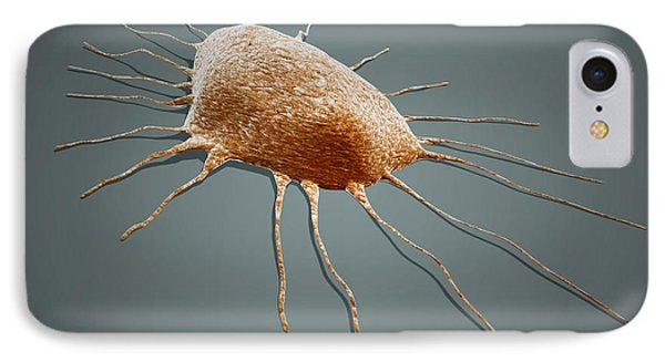 Isolated Cancer Cell Macrophage IPhone Case by Stocktrek Images