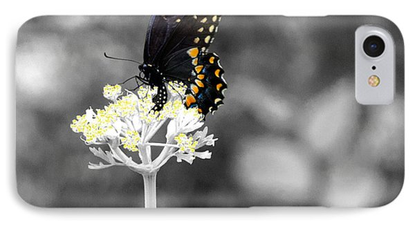 Isolated Swallowtail Butterfly Phone Case by Lorri Crossno