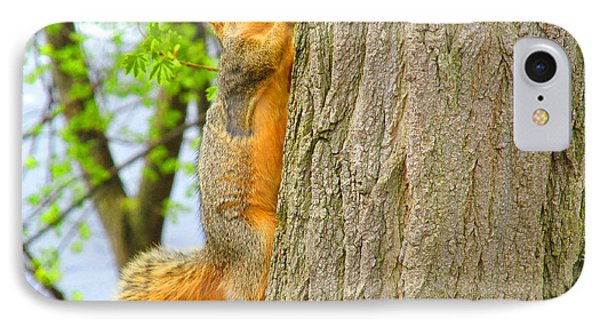 It Is Hard Work Getting To The Top Phone Case by Tina M Wenger