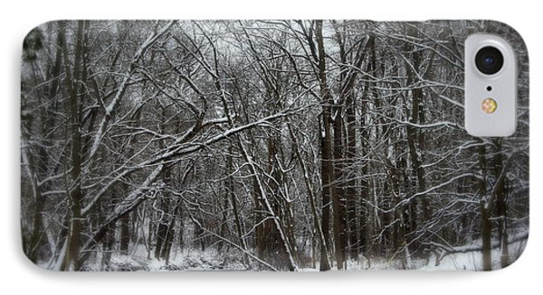Its A Beautiful Winter Phone Case by Kay Novy