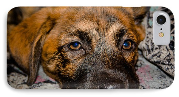 Its A Dogs Life Phone Case by Ronny Sczruba
