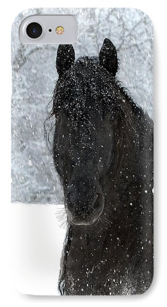 It's Friesian Out Here IPhone Case by Fran J Scott