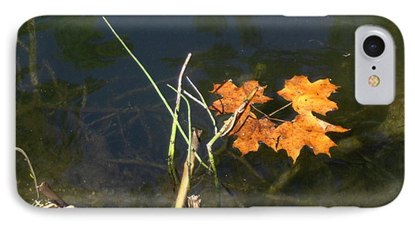 It's Over - Leafs On Pond IPhone Case by Brenda Brown