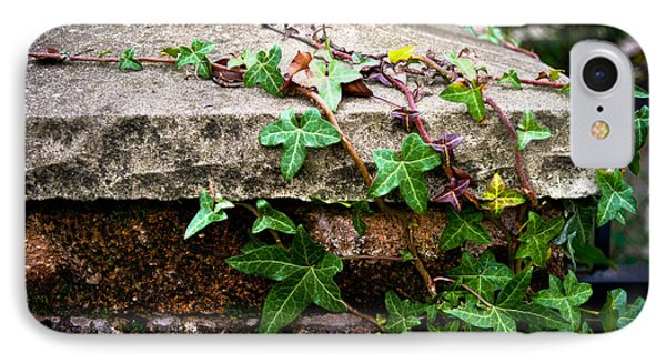 IPhone Case featuring the photograph Ivy On Stone by Crystal Hoeveler