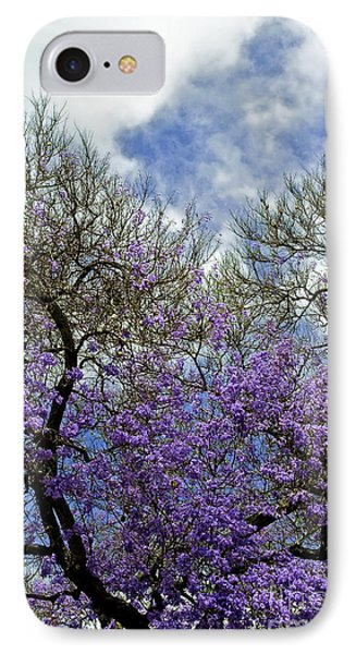 Jacaranda IPhone Case by Gwyn Newcombe