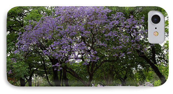 Jacaranda In The Park IPhone Case by John Daly