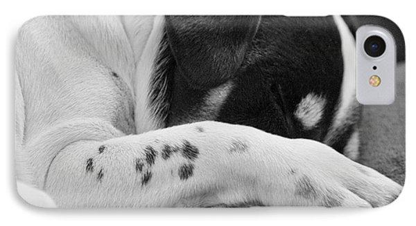 Jack Russell Terrier Dog Asleep In Cute Pose Phone Case by Natalie Kinnear