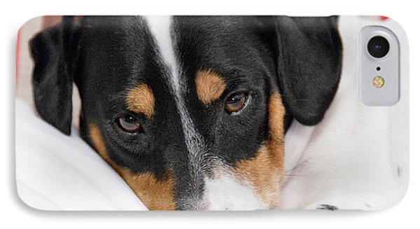 Jack Russell Terrier Dog - Square Format Phone Case by Natalie Kinnear