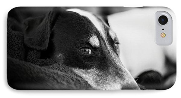 Jack Russell Terrier Portrait In Black And White Phone Case by Natalie Kinnear