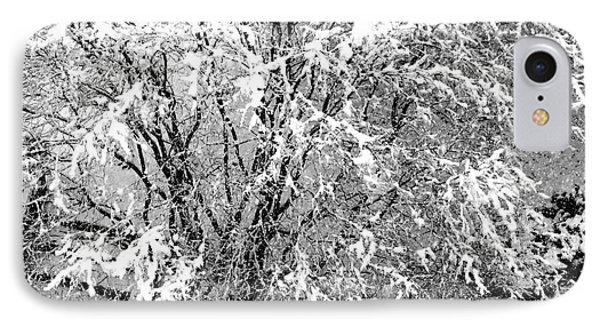 Jackson Pollock's Blizzard IPhone Case by David Gilbert