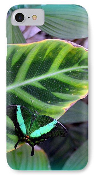 Jade Butterfly With Vignette Phone Case by Carla Parris