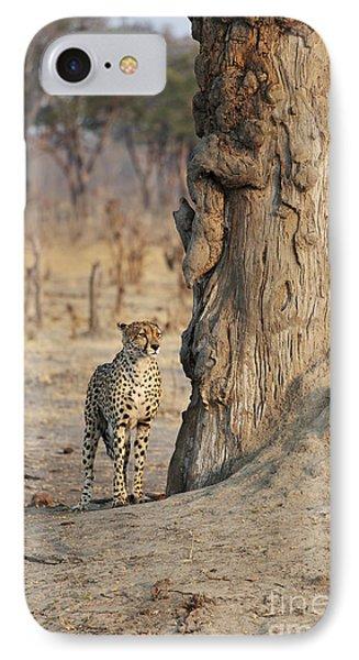 Jaguar In Hwange National Park Phone Case by BC Imaging