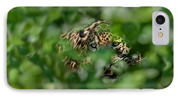 Jaguar Panthera Onca Behind Leaves IPhone Case by Panoramic Images