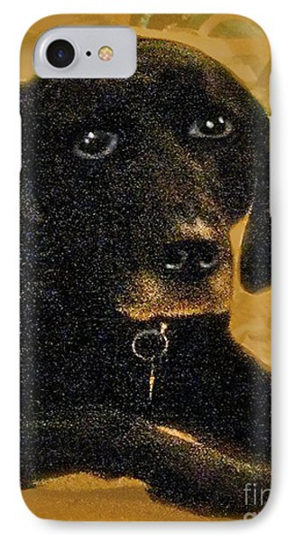 Jaime A Black Lab Phone Case by Maureen Tillman