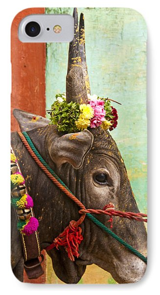 IPhone Case featuring the photograph Jallikattu Bull by Dennis Cox WorldViews