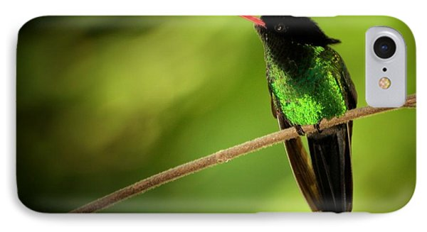 Jamaican Hummingbird 2 IPhone Case