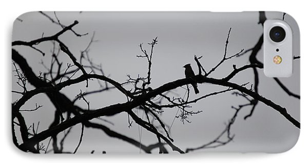 Jammer Bird And Tree Silhouette IPhone Case by First Star Art