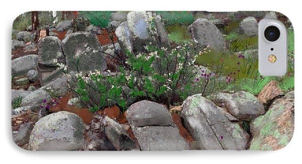 Janies' Rock Garden 1 IPhone Case by Craig Nelson