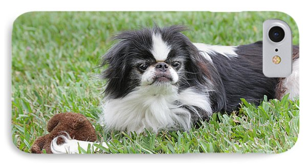Japanese Chin - 1 IPhone Case by Rudy Umans