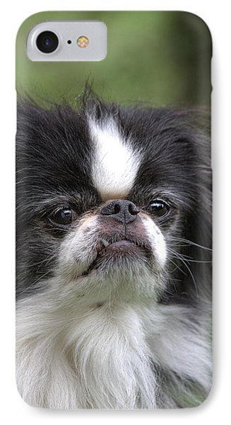 Japanese Chin - 3 IPhone Case by Rudy Umans
