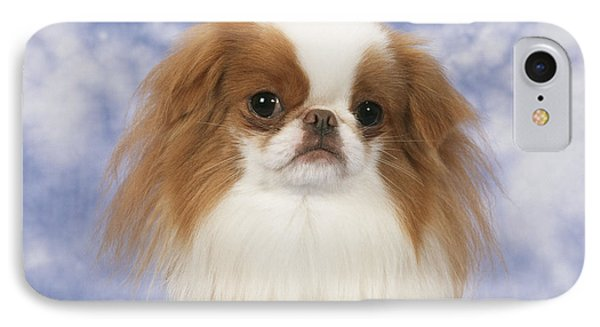 Japanese Chin Dog IPhone Case by John Daniels