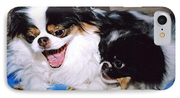IPhone Case featuring the photograph Japanese Chin Dogs Hanging Out And Telling Stories by Jim Fitzpatrick