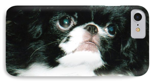 Japanese Chin Puppy Portrait Phone Case by Jim Fitzpatrick