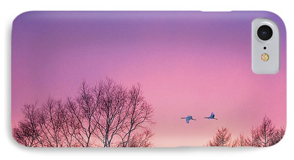 Japanese Cranes Flying To Roost Hokkaido Japan IPhone Case