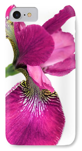 Japanese Iris Hot Pink White  IPhone Case