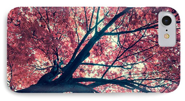Japanese Maple - Vintage Phone Case by Hannes Cmarits
