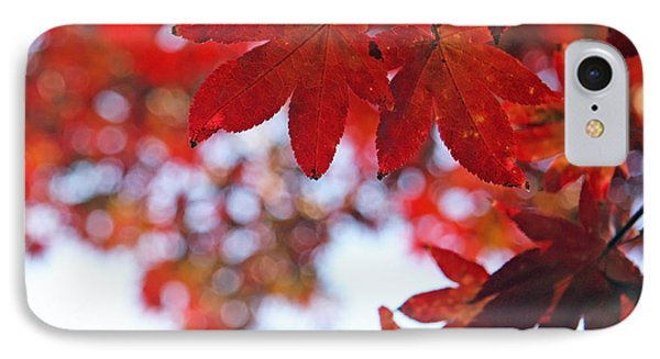 IPhone Case featuring the photograph Japanese Maple In Fall by Brooke T Ryan