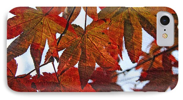 IPhone Case featuring the photograph Japanese Maple Leaves With Woodgrain by Brooke T Ryan