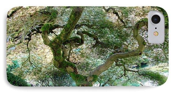 Japanese Maple Tree II IPhone Case by Athena Mckinzie