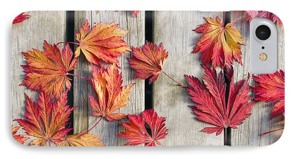 Japanese Maple Tree Leaves On Wood Deck IPhone Case by David Gn