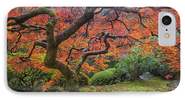 Japanese Maple Tree IPhone Case by Mark Kiver