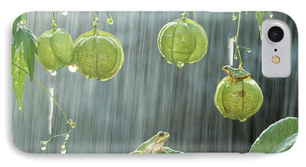 Japanese Tree Frog And Balloon Vine IPhone Case