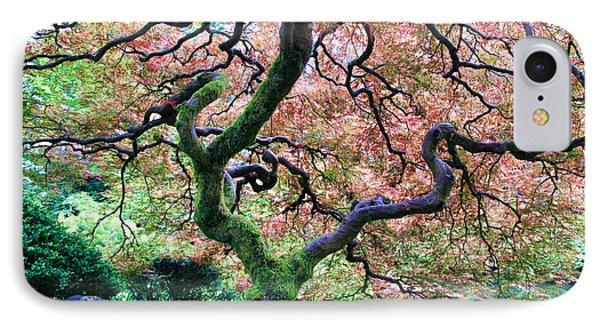 Japanese Tree In Garden IPhone Case by Athena Mckinzie